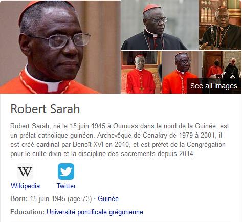 Cardinal Sarah1.png