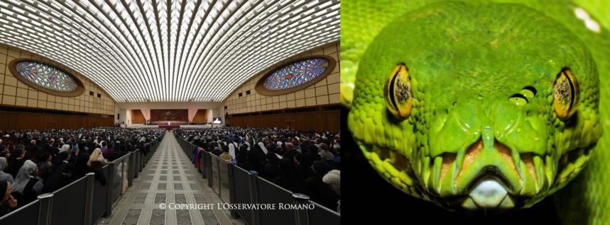 Salle Serpent Vatican.png
