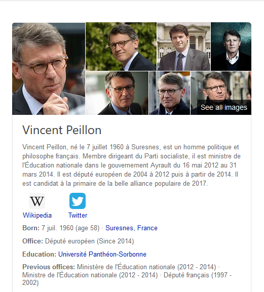 Vincent Peillon.png