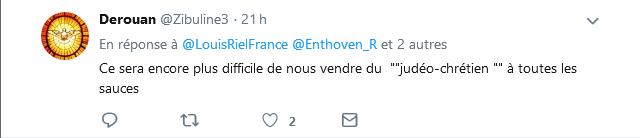 Screenshot_2019-06-18 Louis Riel sur Twitter Ce tweet de Enthoven_R adressé à valerieboyer13 est tout simplement de la diff[...](1)