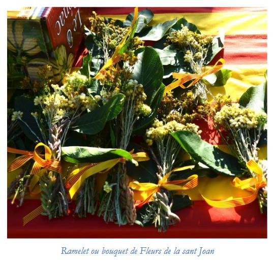 Screenshot_2019-06-24 fete-de-la-saint-jean pdf.png