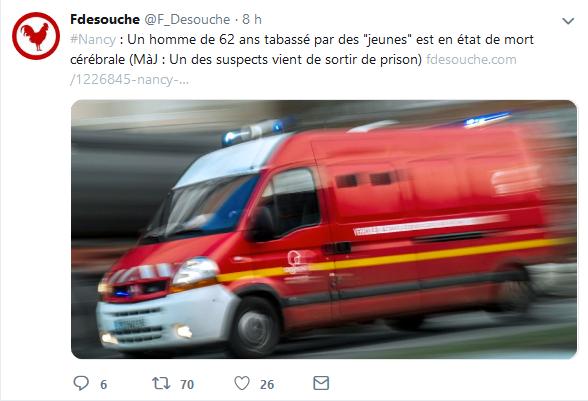 Screenshot_2019-06-26 Fdesouche ( F_Desouche) Twitter.png