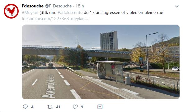 Screenshot_2019-06-26 Fdesouche ( F_Desouche) Twitter(2)