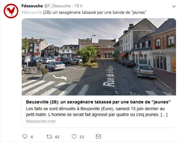 Screenshot_2019-06-26 Fdesouche ( F_Desouche) Twitter(3)