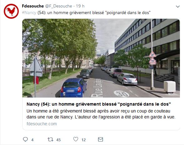 Screenshot_2019-06-26 Fdesouche ( F_Desouche) Twitter(5).png
