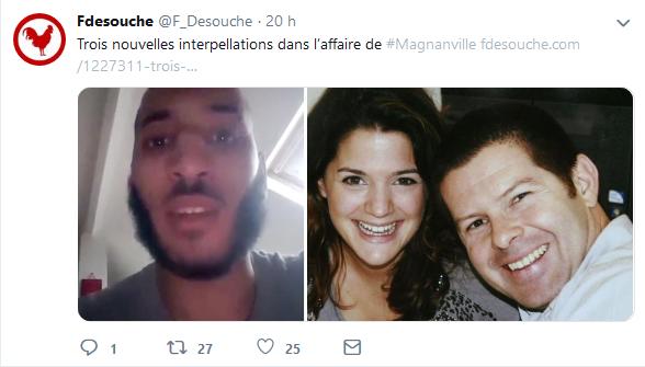 Screenshot_2019-06-26 Fdesouche ( F_Desouche) Twitter(6).png