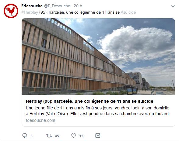 Screenshot_2019-06-26 Fdesouche ( F_Desouche) Twitter(7).png