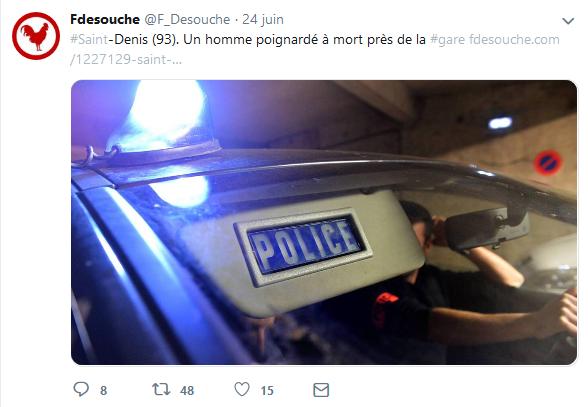 Screenshot_2019-06-26 Fdesouche ( F_Desouche) Twitter(9).png
