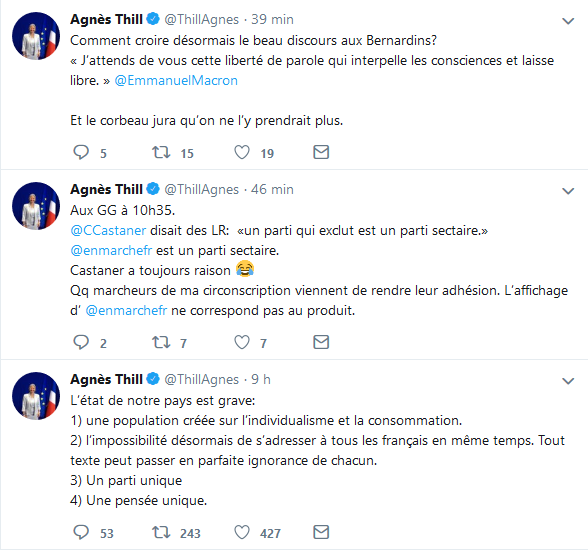 Screenshot_2019-06-27 Agnès Thill ( ThillAgnes) Twitter(9)
