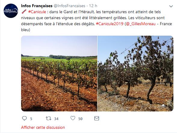 Screenshot_2019-06-30 Infos Françaises ( InfosFrancaises) Twitter.png