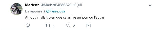 Screenshot_2019-07-10 Pierre Jova sur Twitter Une Britannique de 33 ans arrêtée au Canada après avoir quitté son épouse, en[...](12)