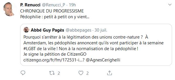 Screenshot_2019-08-01 Accueil Twitter(5)