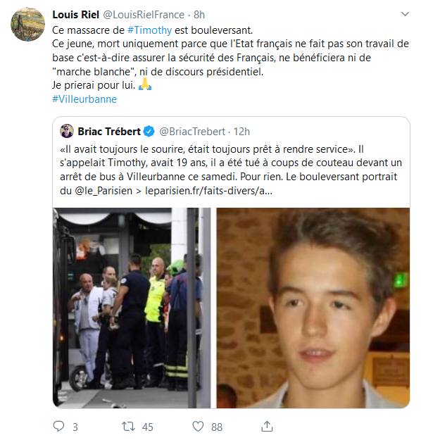 Screenshot_2019-09-02 Accueil Twitter(12)
