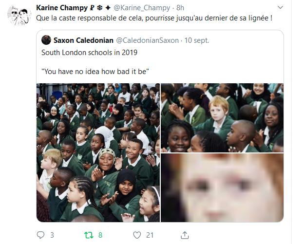 Screenshot_2019-09-12 (2) Accueil Twitter(5)