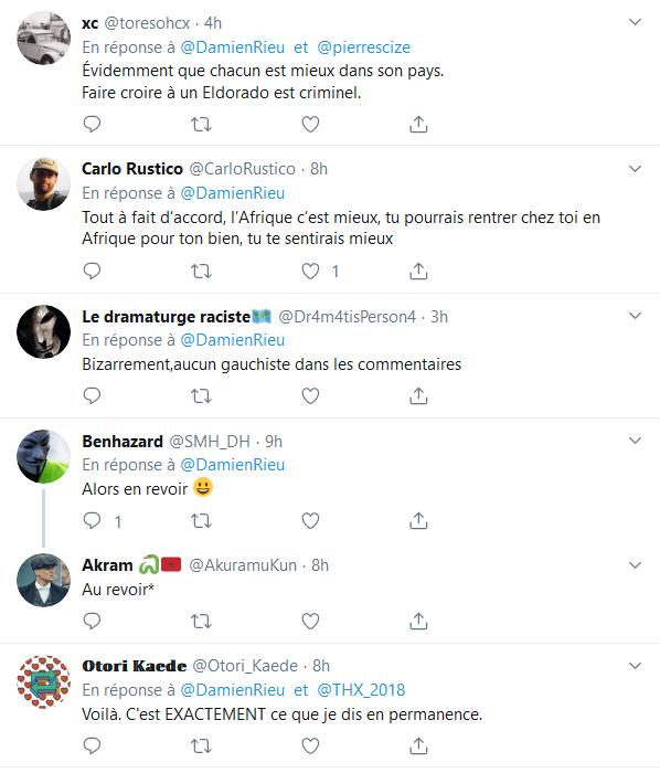 Screenshot_2019-09-14 (2) Damien Rieu sur Twitter « Je conseille aux Africains de rester en Afrique La télévision ne nous a[...](5)