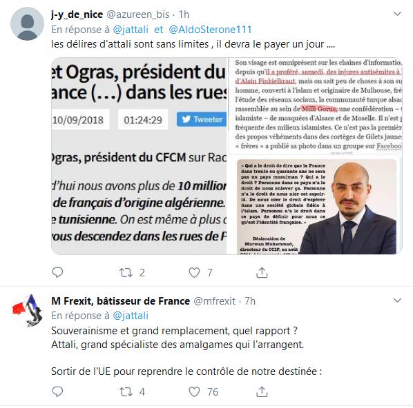 Screenshot_2019-10-04 Jacques Attali sur Twitter Le souverainisme n'est que le nouveau nom de l'antisémitisme Les juifs et [...](5)