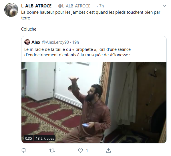 Screenshot_2019-10-05 Accueil Twitter(9)