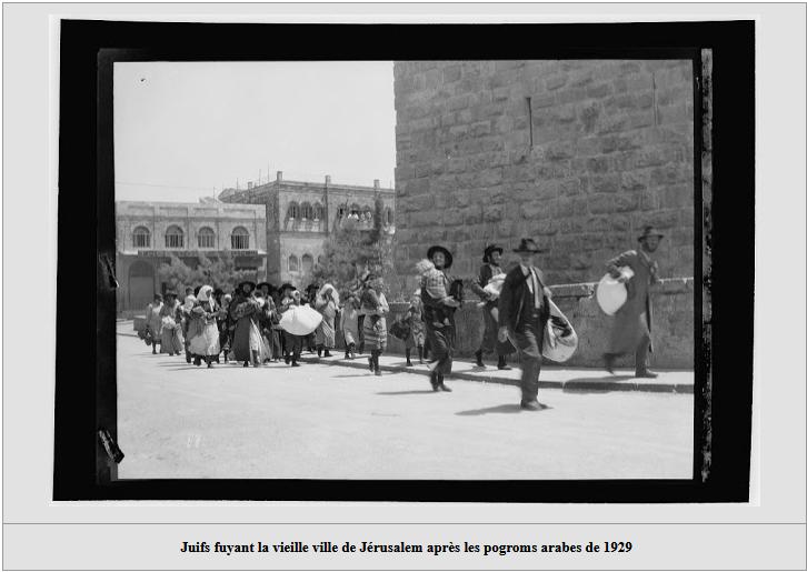 Screenshot_2020-01-13 Expulsion des Juifs de Jérusalem ils veulent recommencer - images de 1929, 1936, 1948 (1)